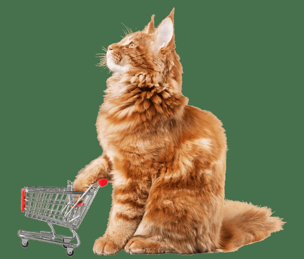 Nobil Pet Gubbio Negozio per animali e cibo per cani e gatti